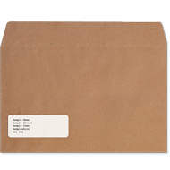 Sage Payslip Plus Envelopes